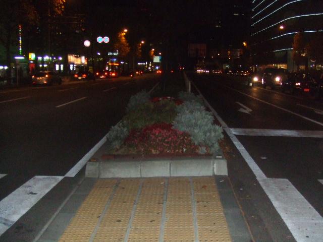 2005_1130itai20158.JPG